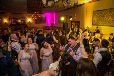 The bridal party has a blast dancing at the reception of this A Villa Louisa Wedding as the wedding band rocks the house in the background.