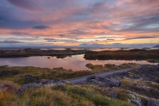 A stunning sunset near lake Myvatn in Iceland. The purple and pink clouds are contrasted perfectly by the dark lava rock and small flowers in the foreground of this fine-art photograph.