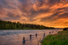 The sun sets along the Kenai River in Soldotna Alaska setting the sky ablaze with vibrant orange clouds as fly fisherman line the river banks hoping to fill their daily limit of three Sockeye Salmon.