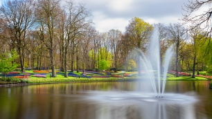 A panoramic photograph of the fountain with colorful tulips growing in the hills in the background at the Keukenhof Tulip Garden in Holland