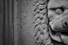 A portrait photograph of the lion face sculpture from the coat of arms to Belgium, as seen on a statue in Brugge. Here, the lion face is placed to the right of the photograph and split in half by the edge, forcing the viewers imagination to create a whole to complete the composition.