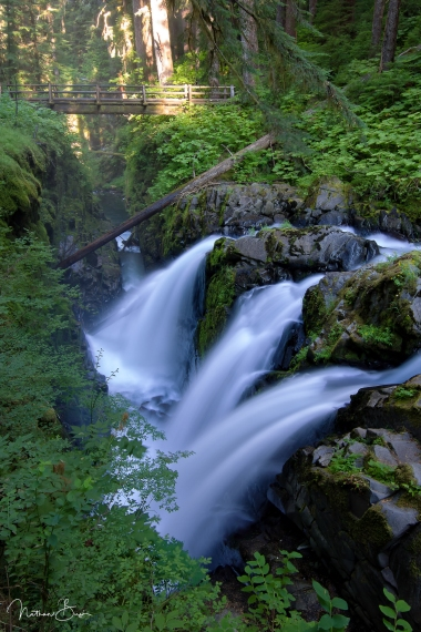 Sol Duc Falls, in the heart of the Hoh Rainforest of Olympic National Park, flows majestically out of the lush green forest and into the canyon bellow. In the background, a log bridge overlooks the falls.